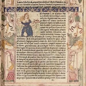 Bolonia, 1445- Bolonia 1510